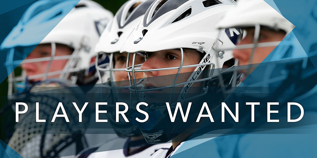 Pitchero Players wanted