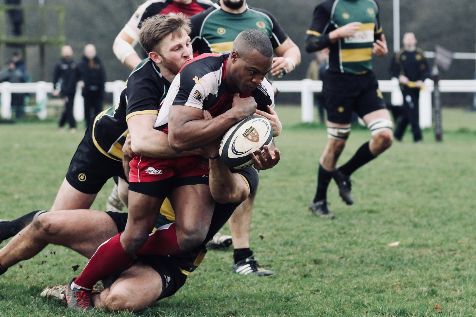 chiltern rugby